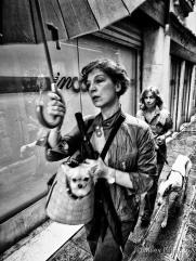 Venetian dog handbag