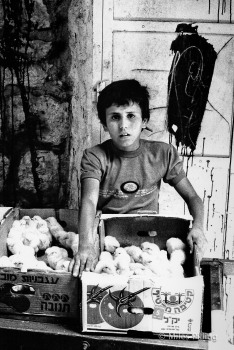 Palestinian boy, Old City, Jerusalem