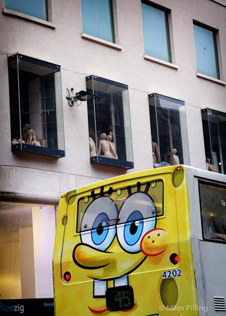 Travel for dummies, Birmingham 2011